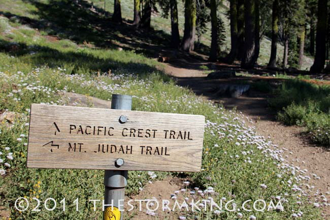 Nugget #215 Judah PCT Trail  Sign